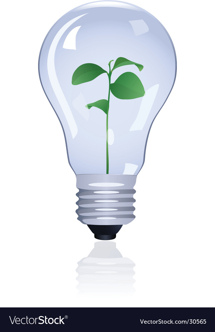 Plant in lamp vector image