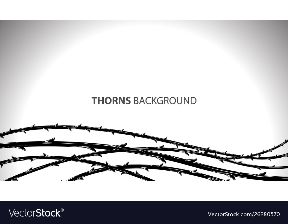 Blackthorn branches with thorns stylish background