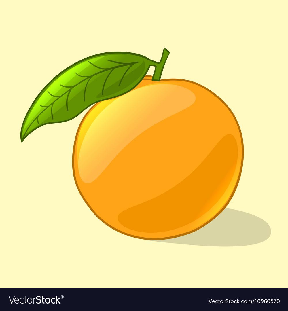 Orange in cartoon style