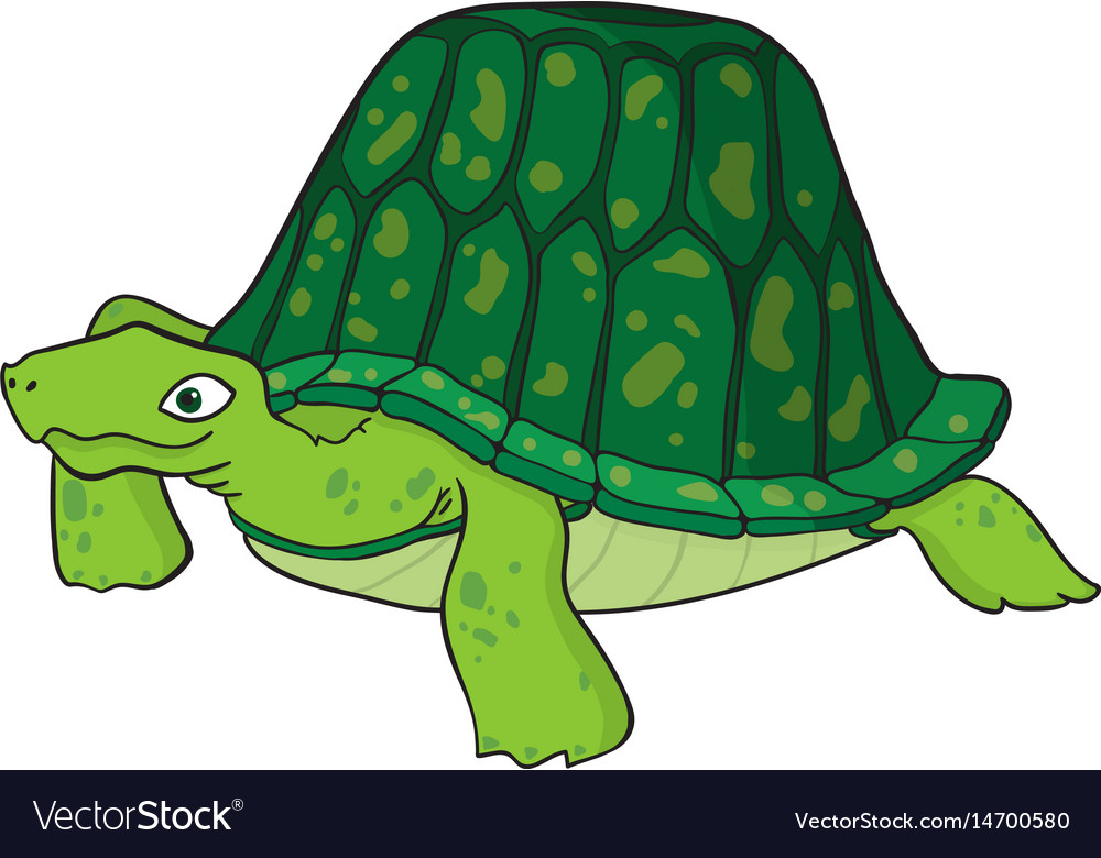 Cartoon image of turtle