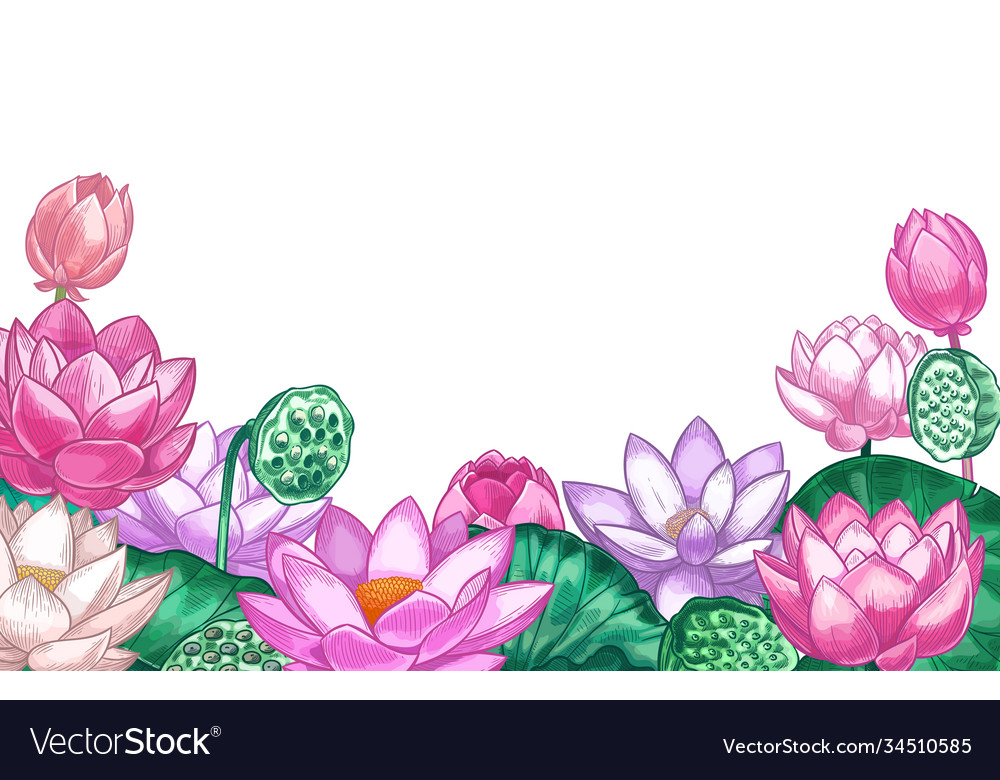 Lotus background hand drawn floral banner with