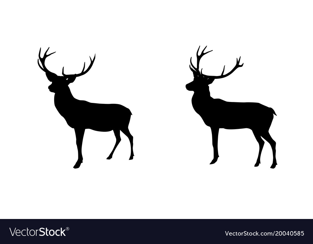 Set black and white deer with horns isolated on