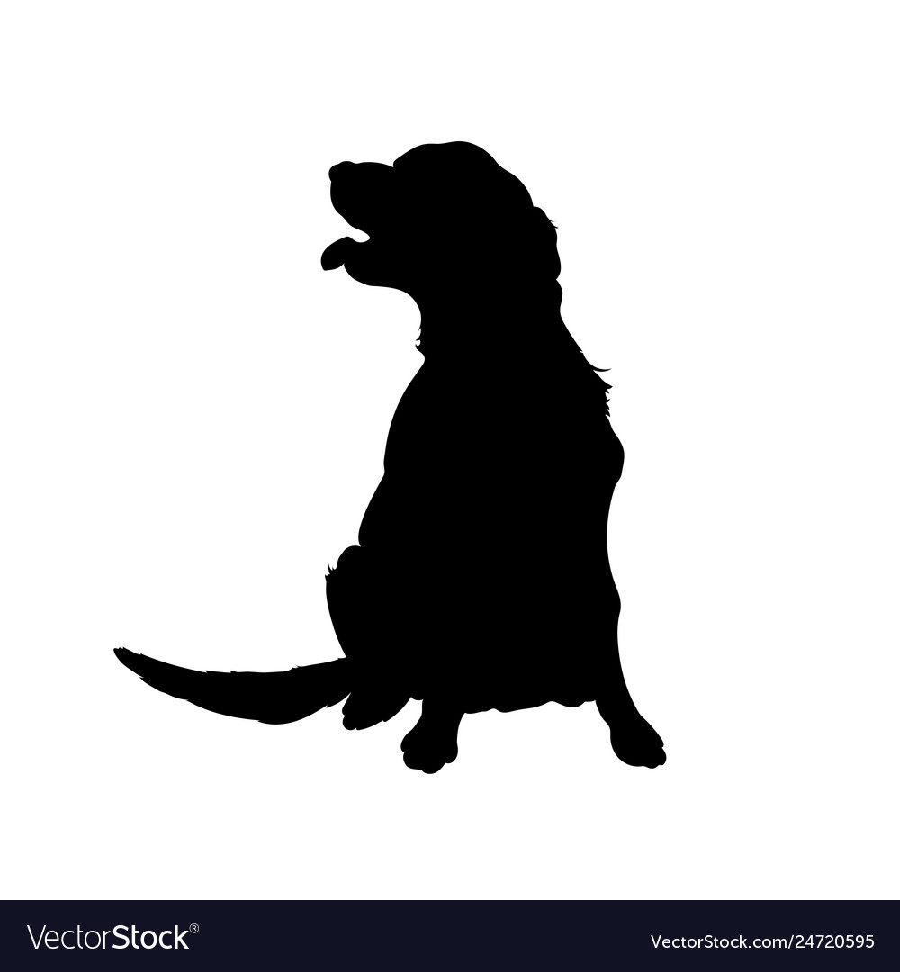Black silhouette of dog isolated image