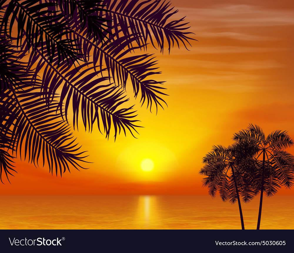 Summer night Palm trees on the background of