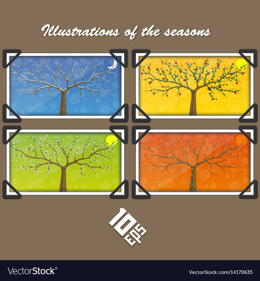 Seasons in tree cover