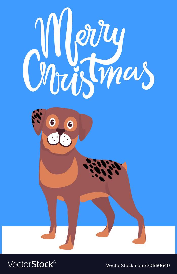 Dog Christmas Card Photo.Merry Christmas Greeting Card With Brown Dog Smile