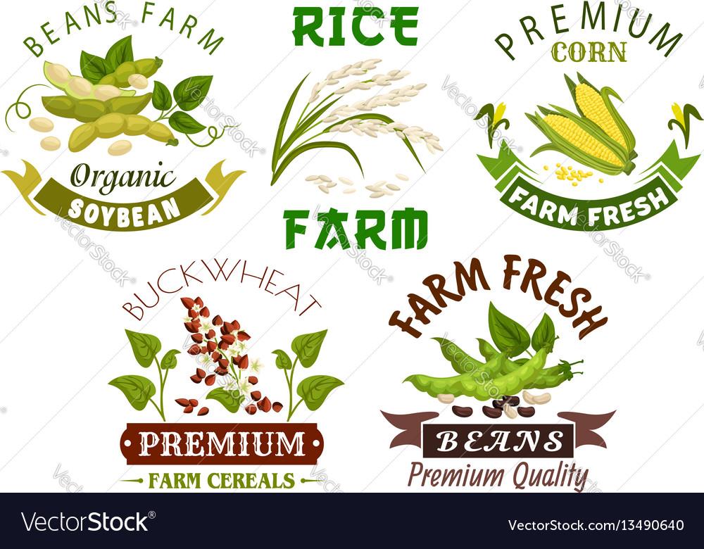 Vegetable cereal bean farm emblem set design