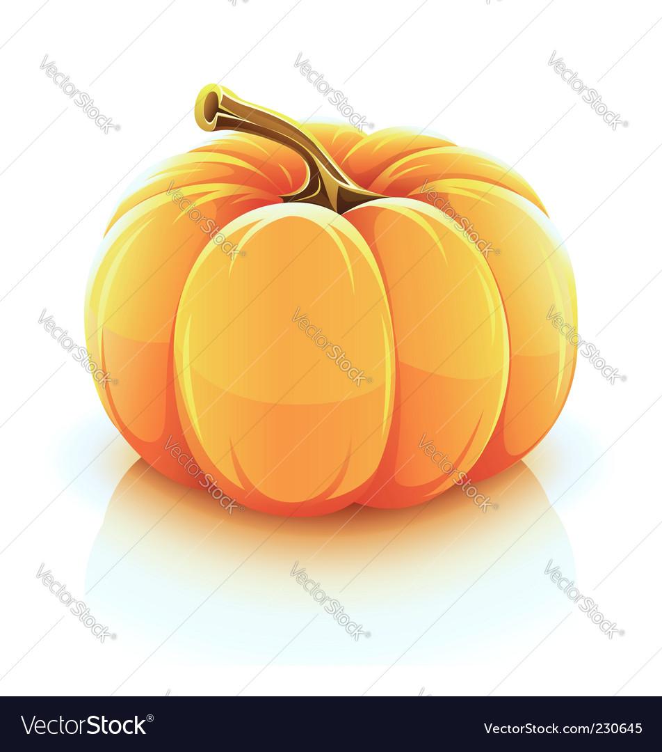 draco of orange coloring