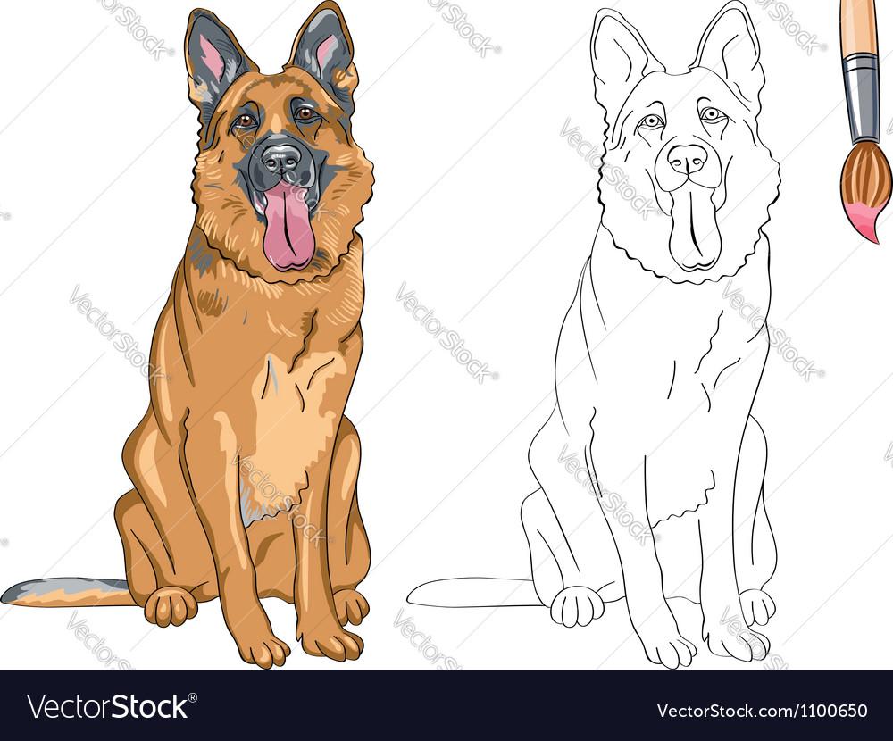 Coloring Book of smiling dog German shepherd Vector Image
