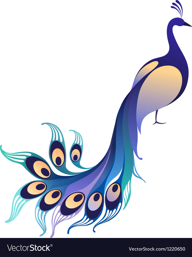 peacock royalty free vector image vectorstock rh vectorstock com peacock vector illustration peacock vector logo