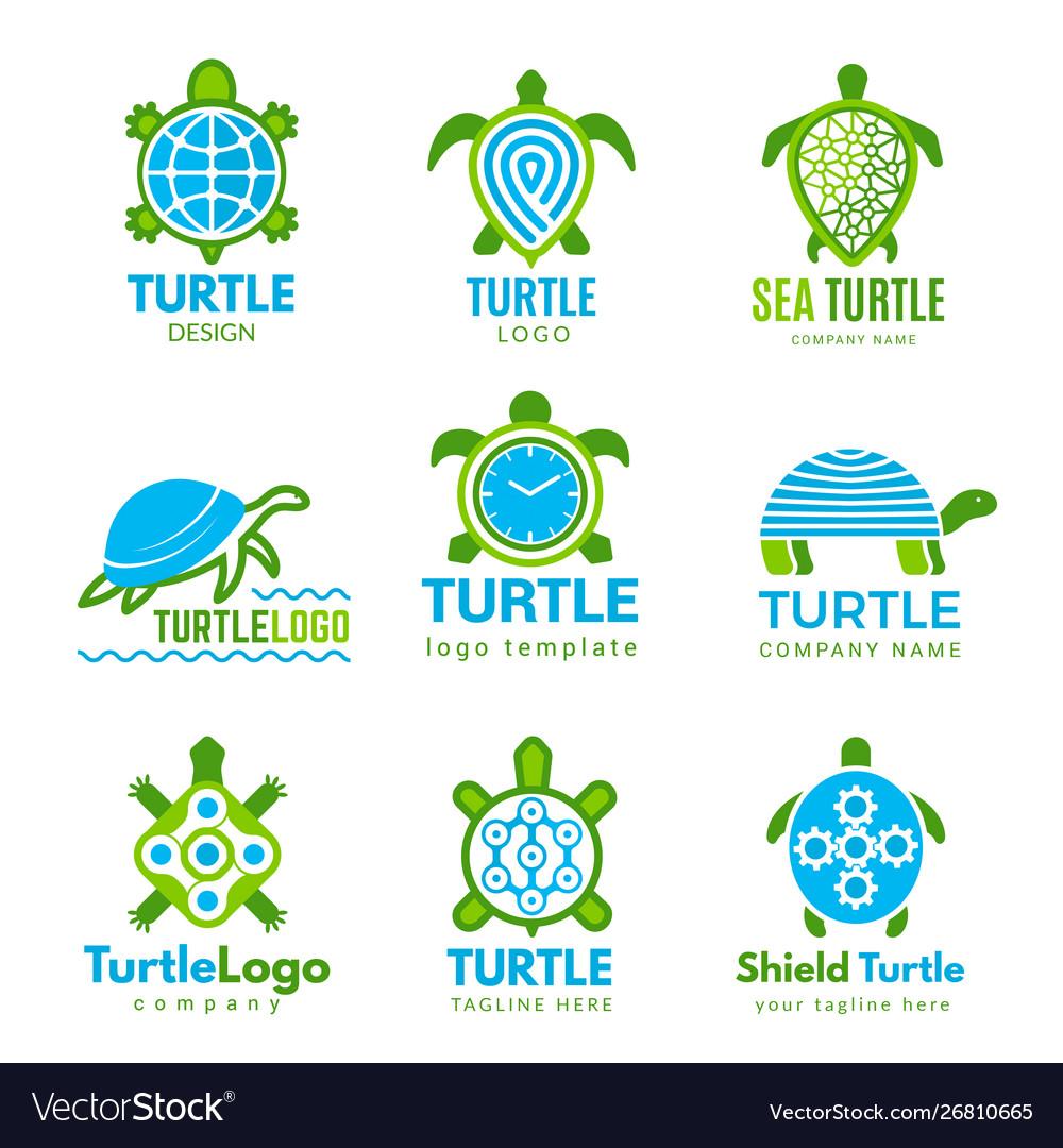 Turtle logo ocean wild animal stylized symbols