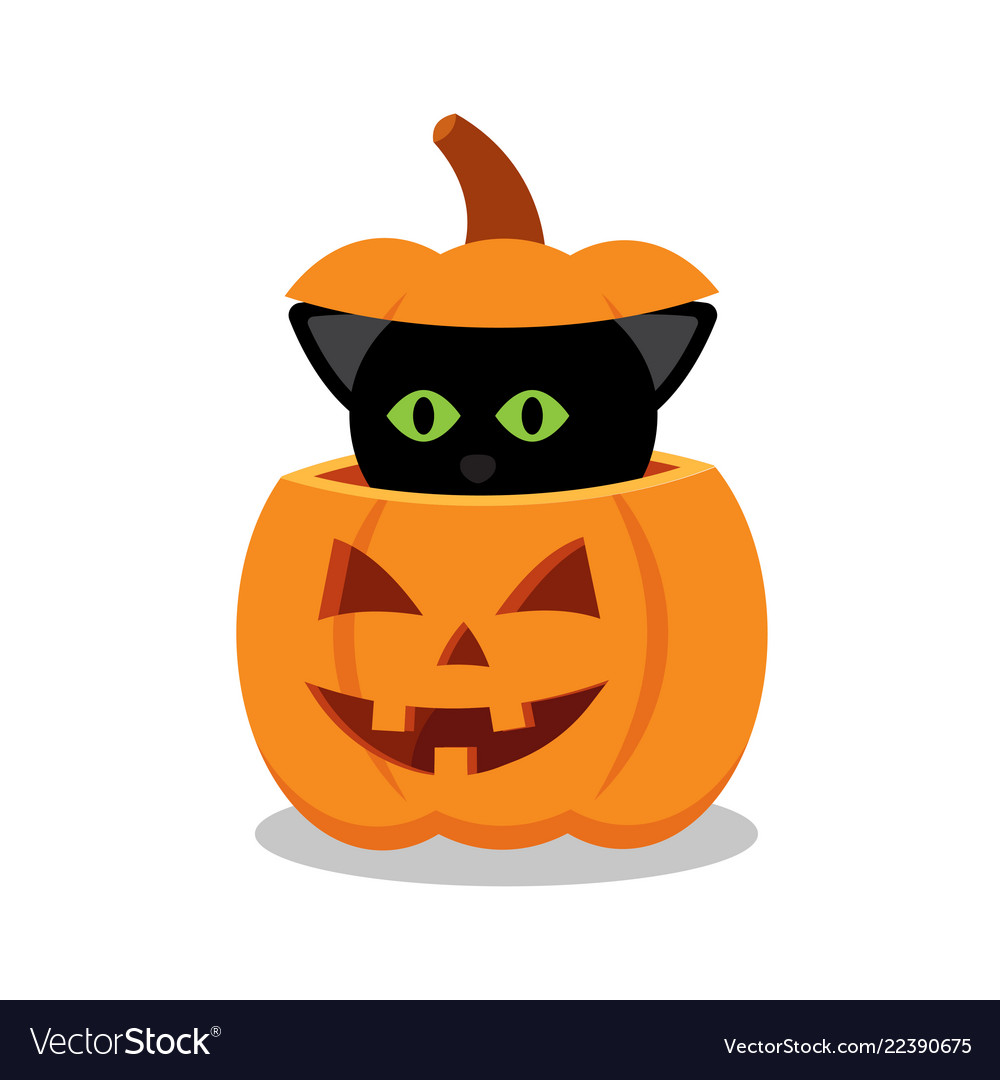 Halloween Pumpkin Vector Art.Black Cat On A Halloween Pumpkin