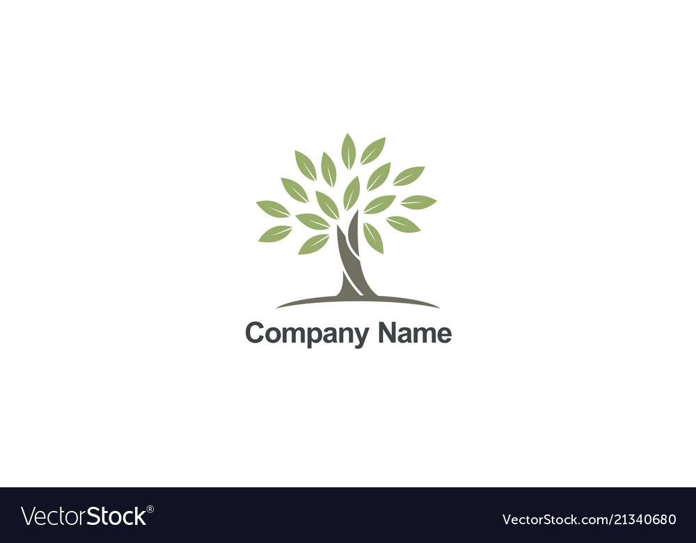 Tree abstract organic nature company logo