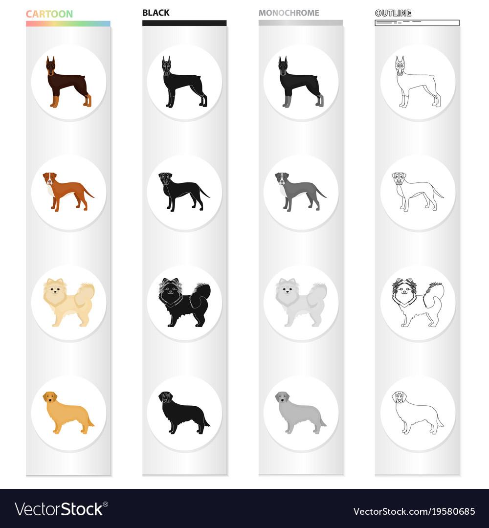 Doberman beagle pomeranian and other web icon vector image