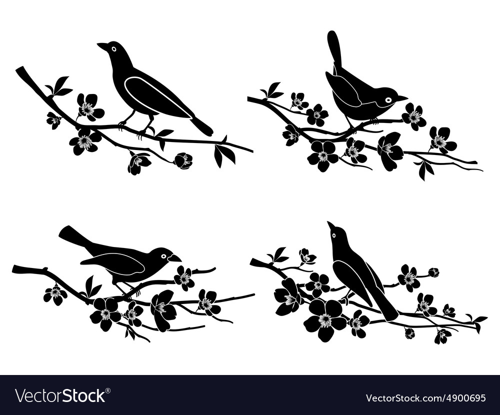 Birds on branches silhouettes