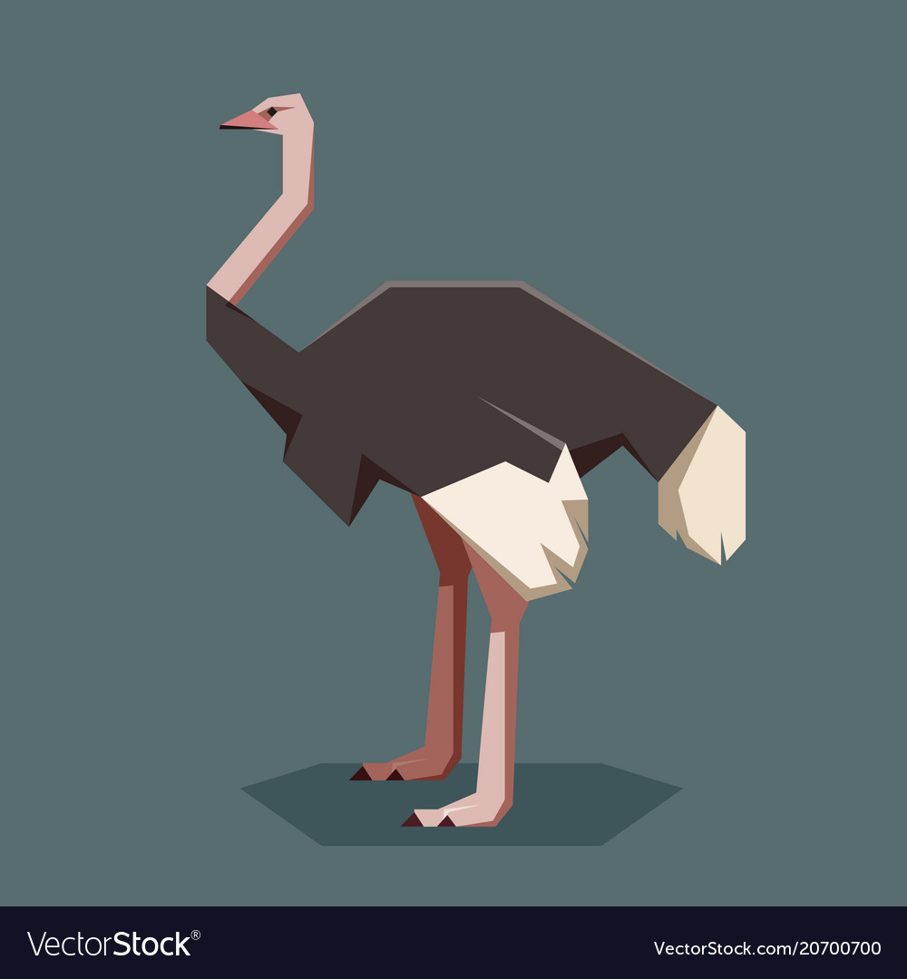 Flat geometric ostrich