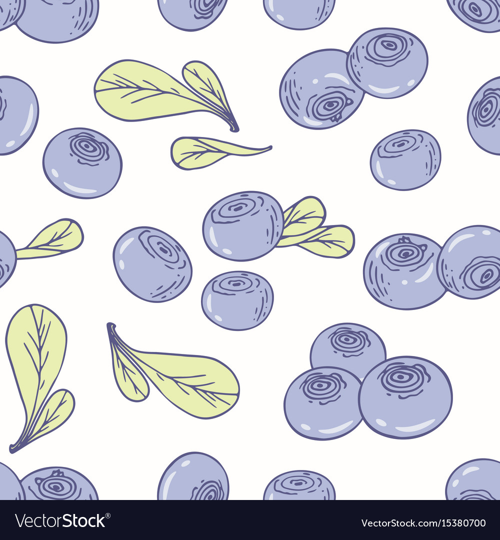 Hand drawn seamless pattern with blueberry