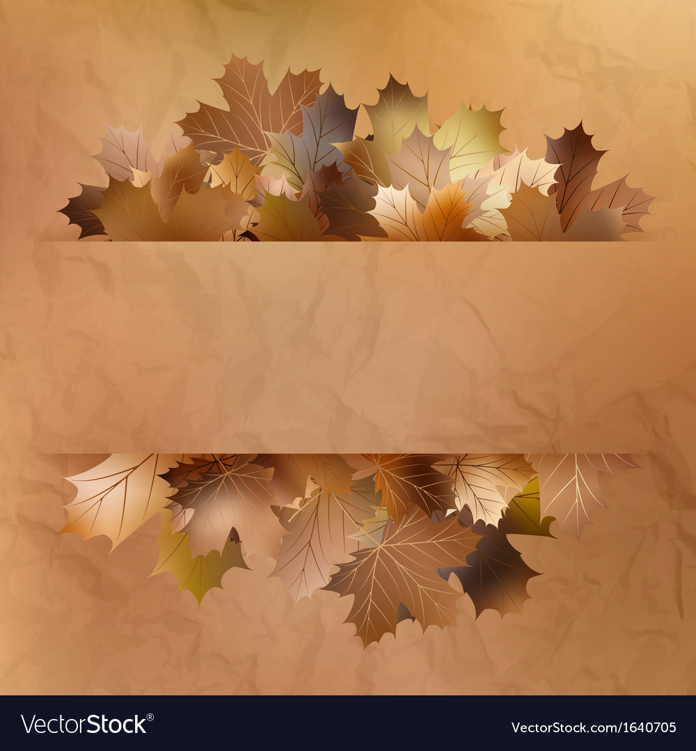 Colorful autumn leaves on a old paper EPS 10