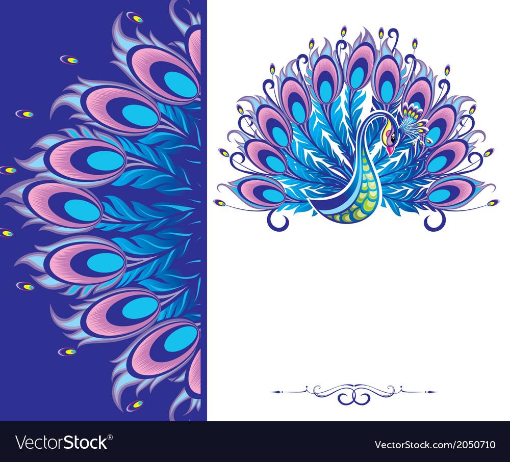 peacock card royalty free vector image vectorstock
