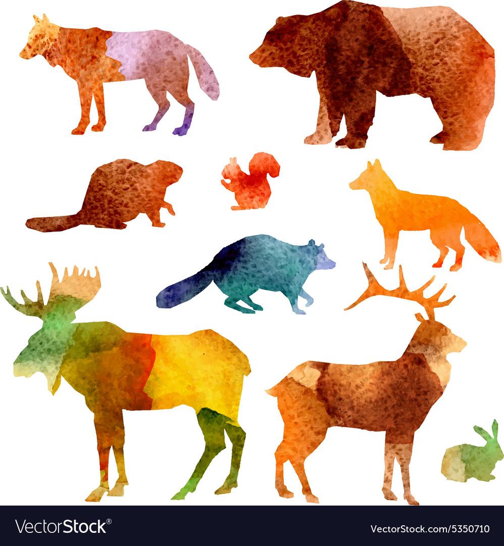 Watercolor Animals Set vector image
