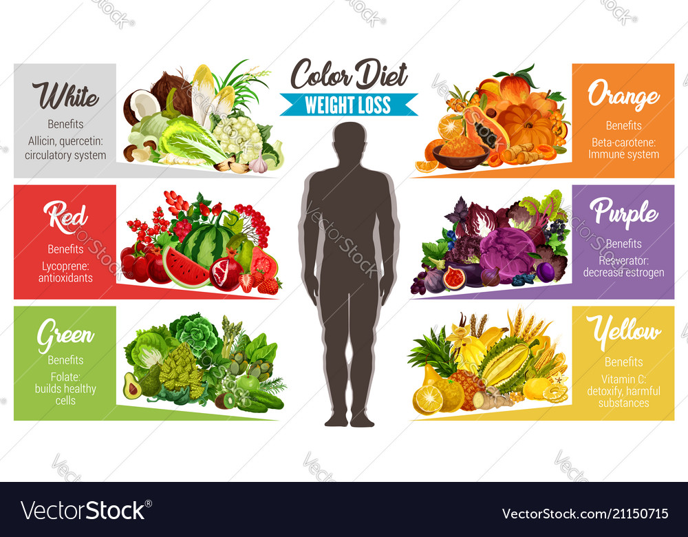Color Diet Healthy Food Banner For Weight Loss Vector Image