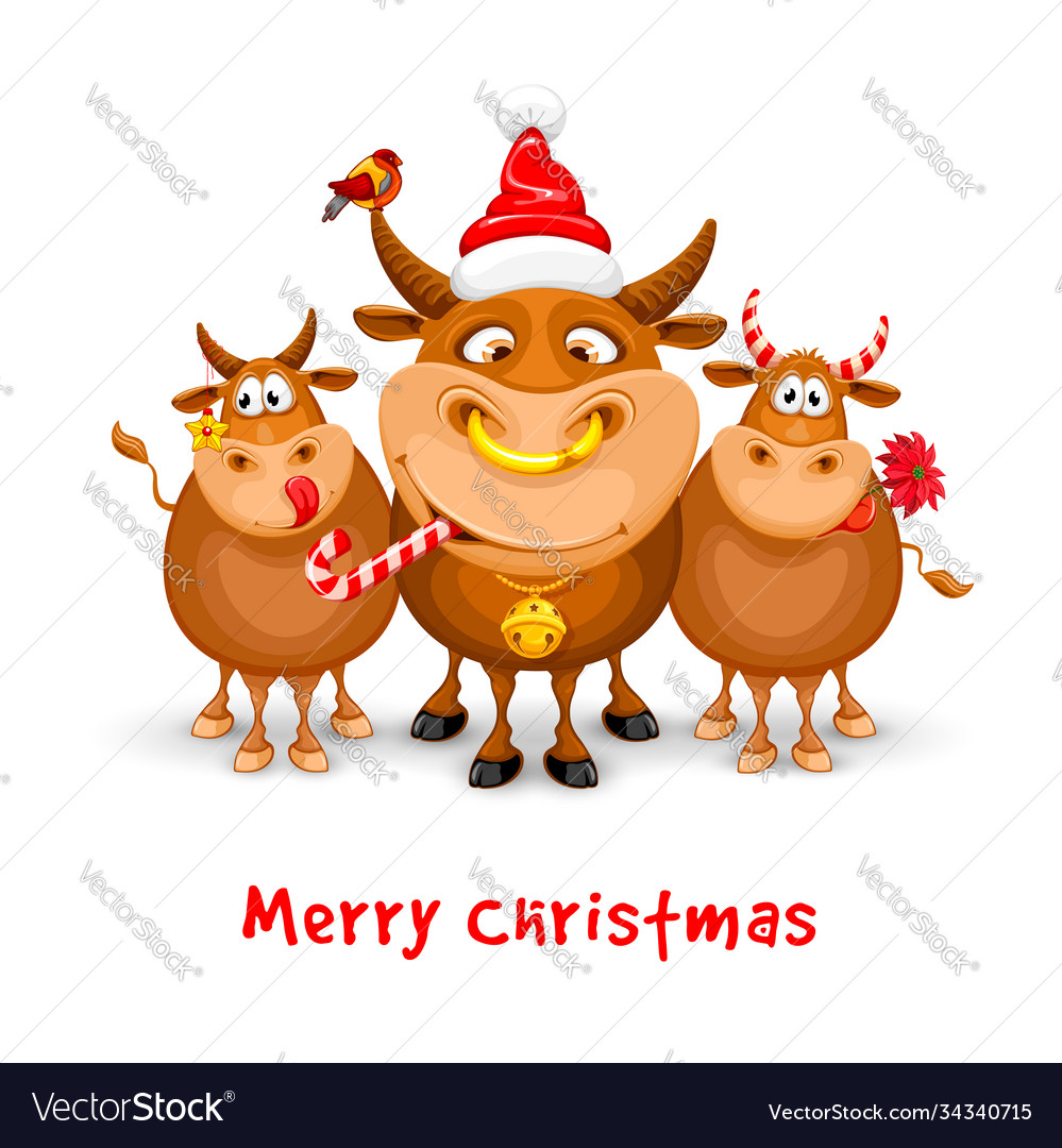 Merry christmas and happy new year greeting