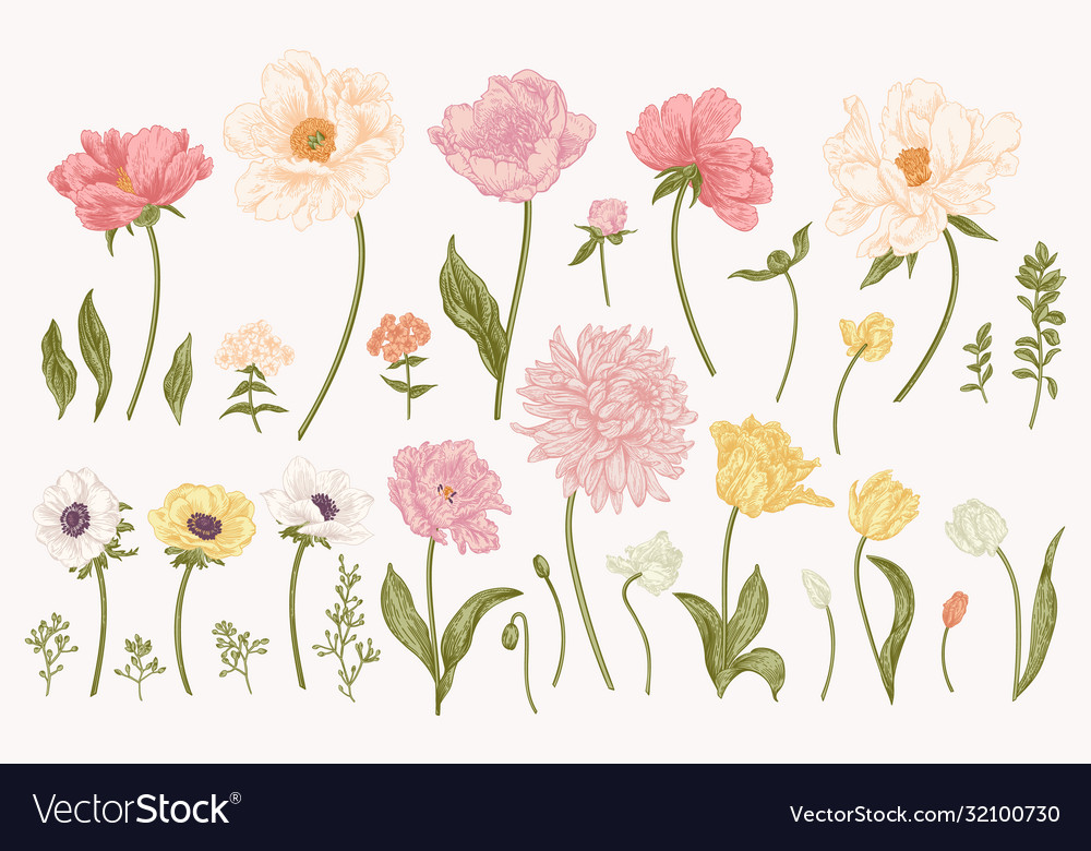 Set with garden flowers