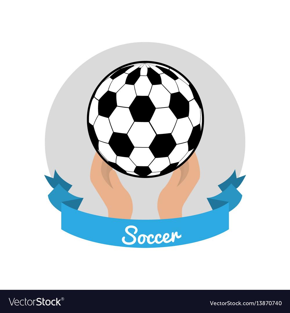 Emblem soccer game icon