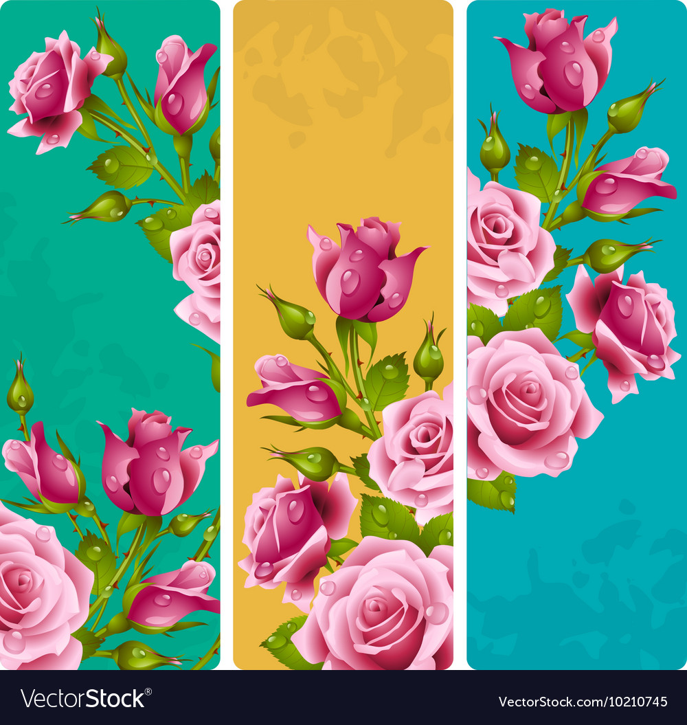 Pink rose frames set