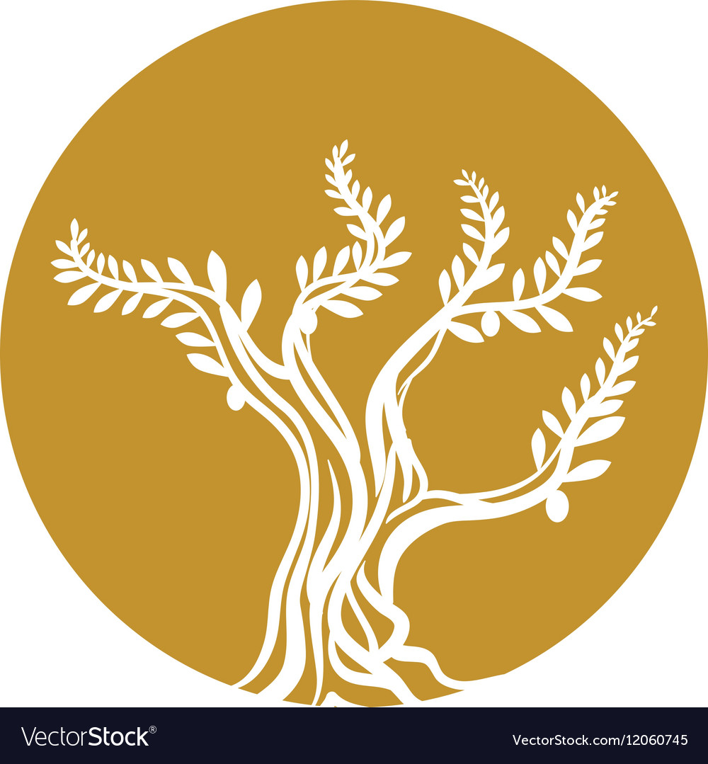 Tree olive branch sketch icon yellow circle