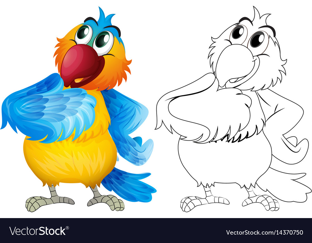 Animal outline for cute parrot
