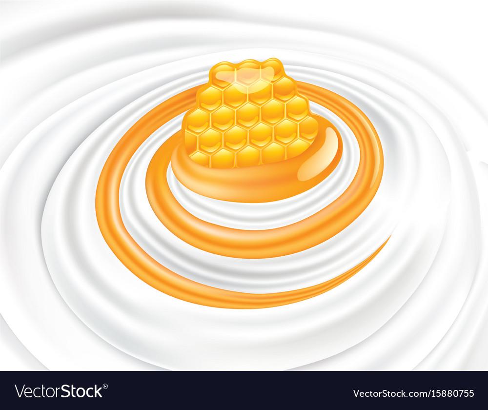 Sweet honey flow in milk whipped cream