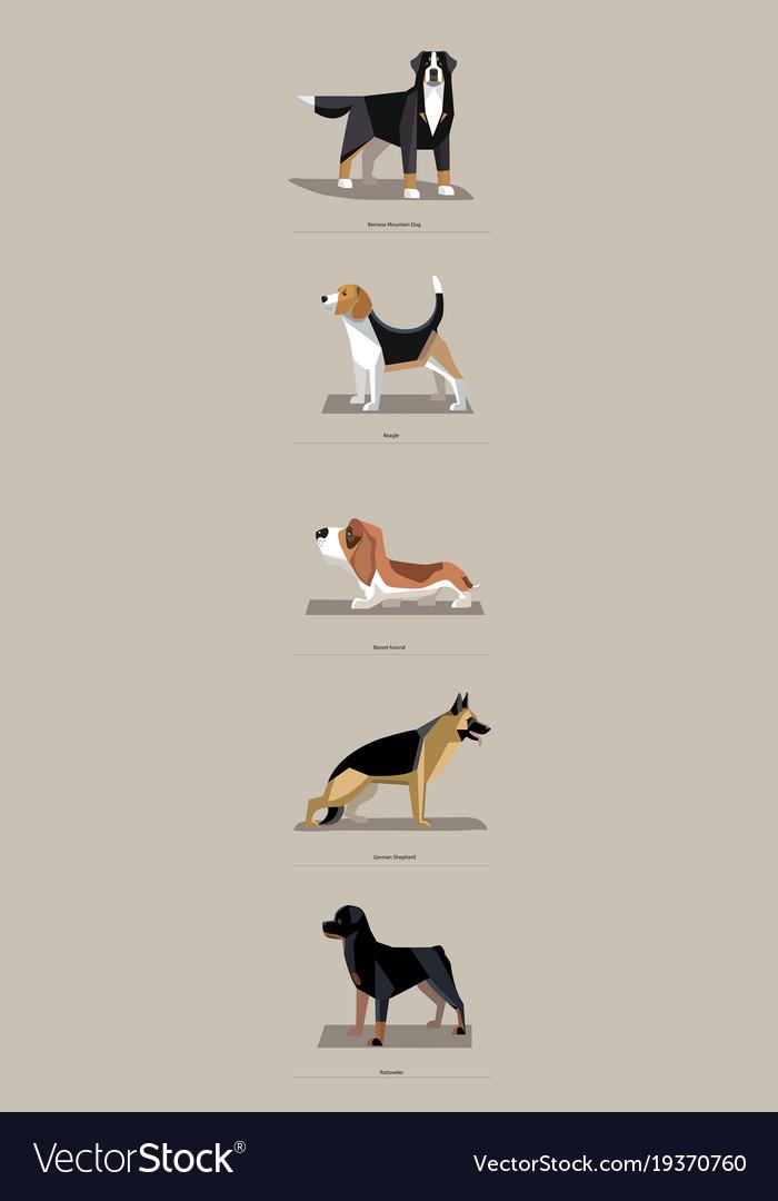 Dog breeds in minimalist style