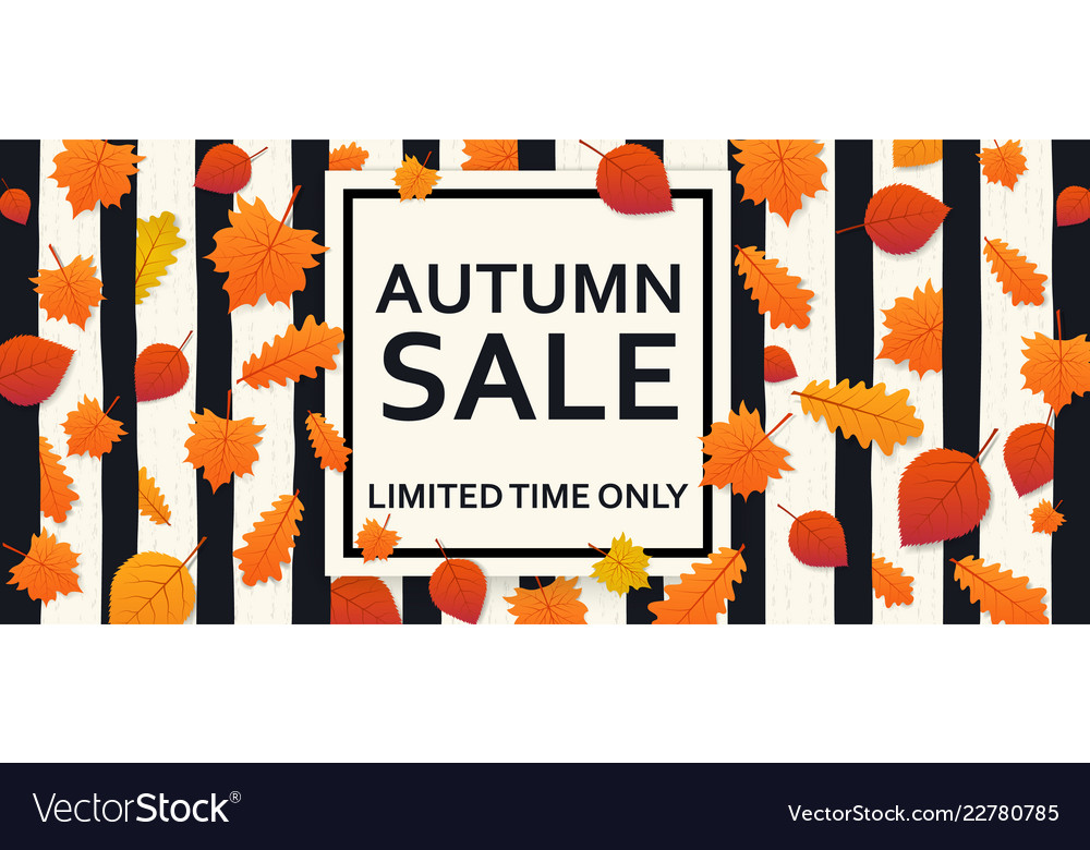 Autumn sale background with leaves and banner