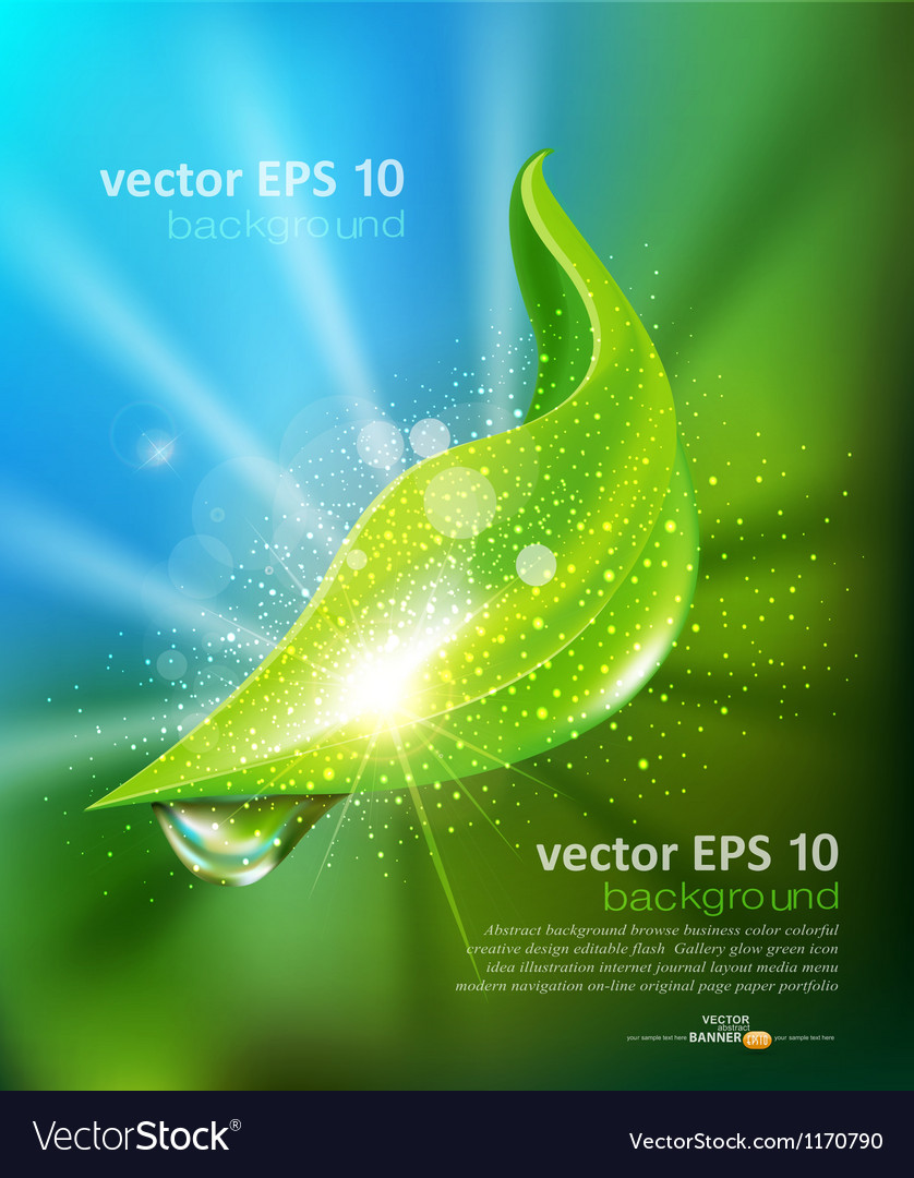 Green leaf and a drop of dew vector image