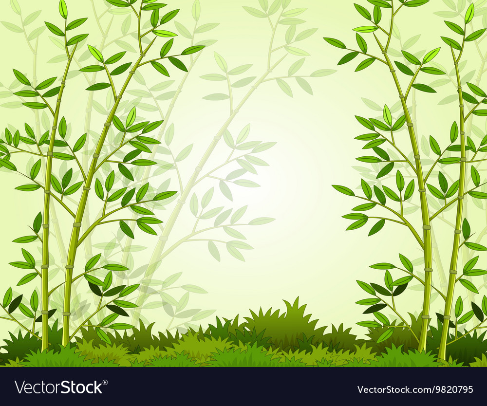 6657f10e5200 Beautiful bamboo forest background Royalty Free Vector Image