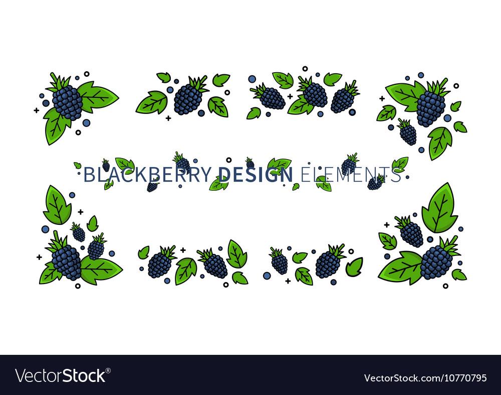 Blackberry line art vector image