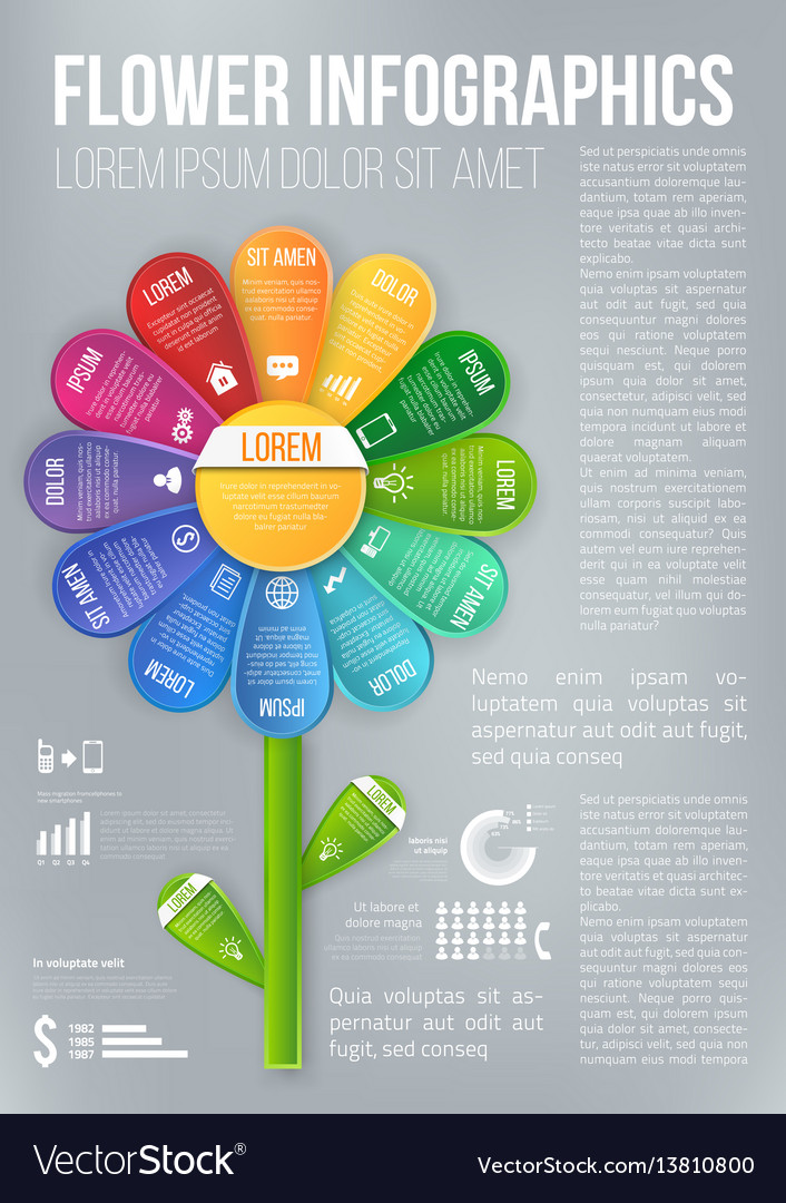 Flower style infographic chart options menu