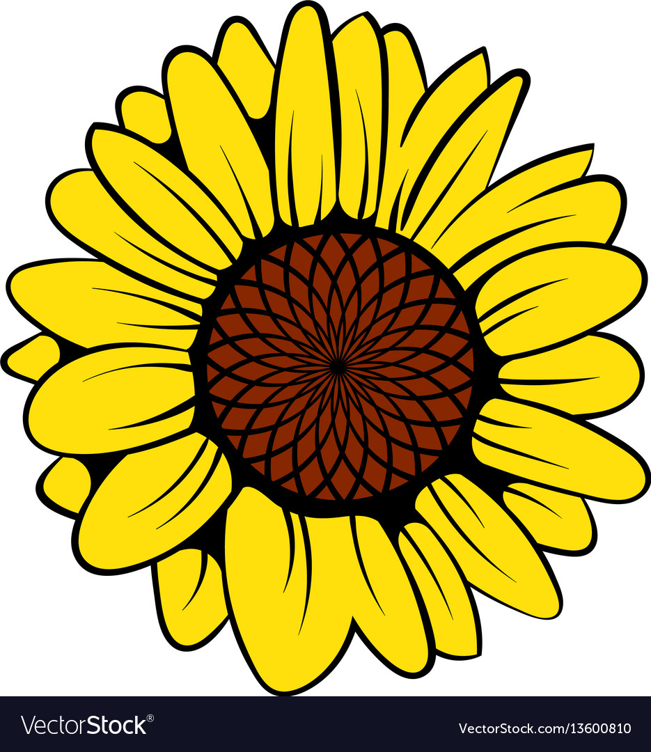 sunflower icon icon cartoon royalty free vector image rh vectorstock com sunflower cartoon wallpaper sunflower cartoon png