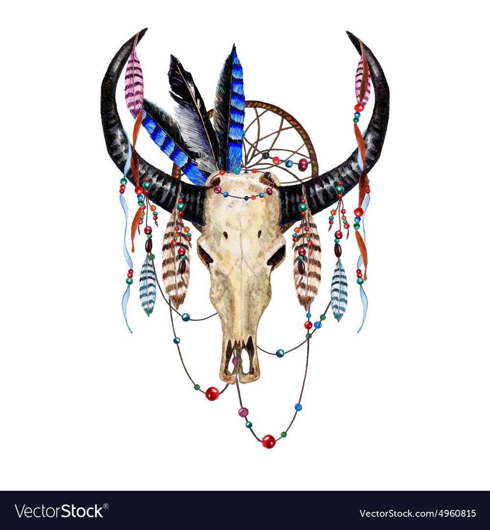 Bull Skull Feathers4 vector image