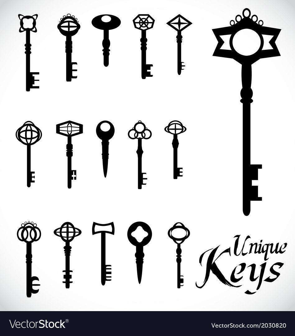 Unique Keys vector image