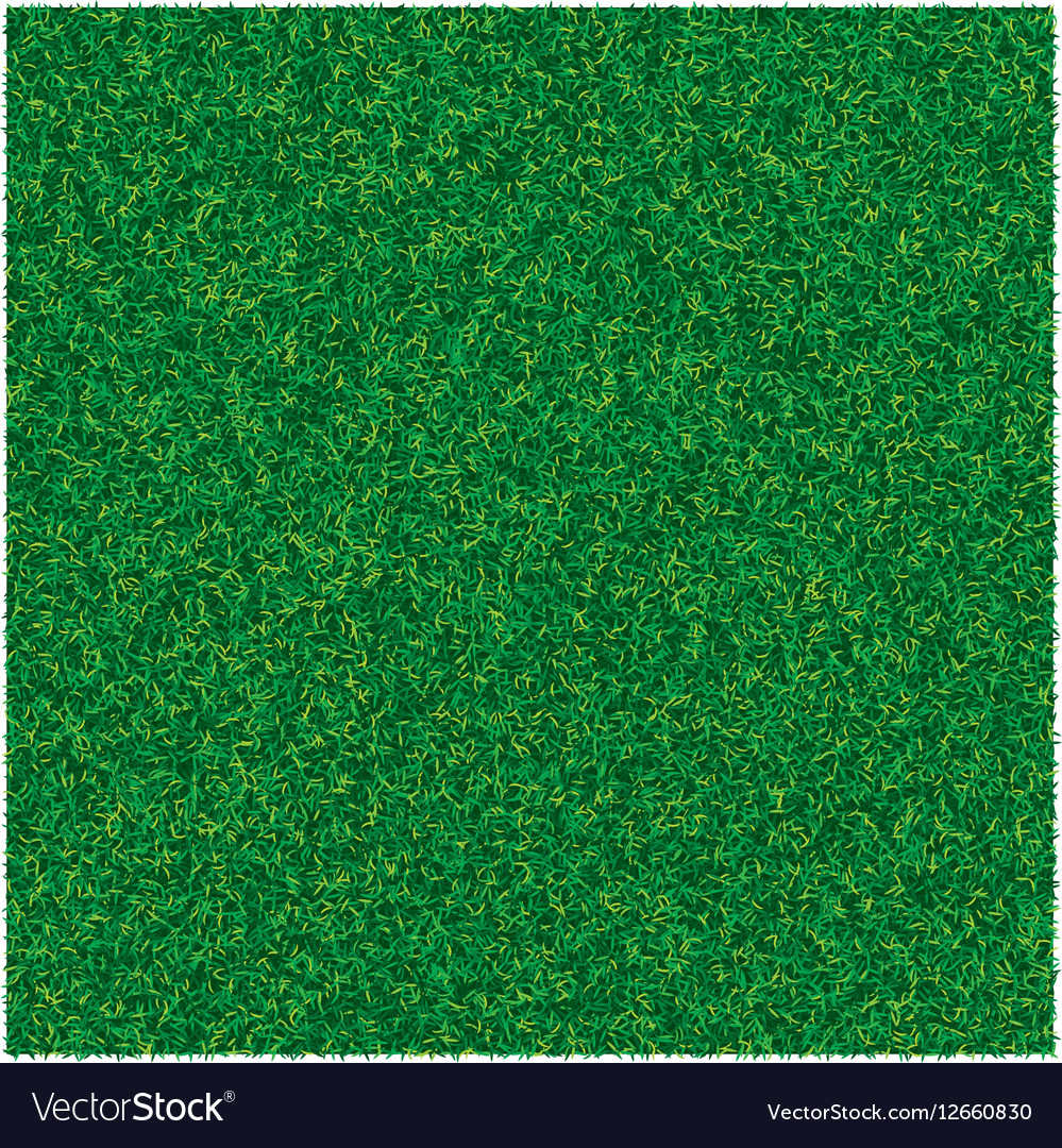 Abstract texture with green lawn grass for vector image