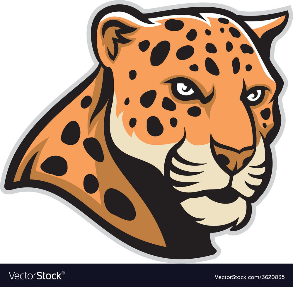 jaguar head mascot royalty free vector image vectorstock rh vectorstock com Jaguar Mascot Clip Art of Cartoon School Jaguar Mascot Blue