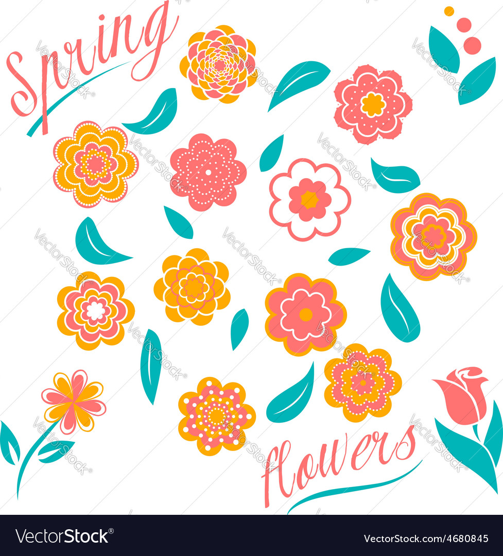 Set of flowers and floral elements isolated on