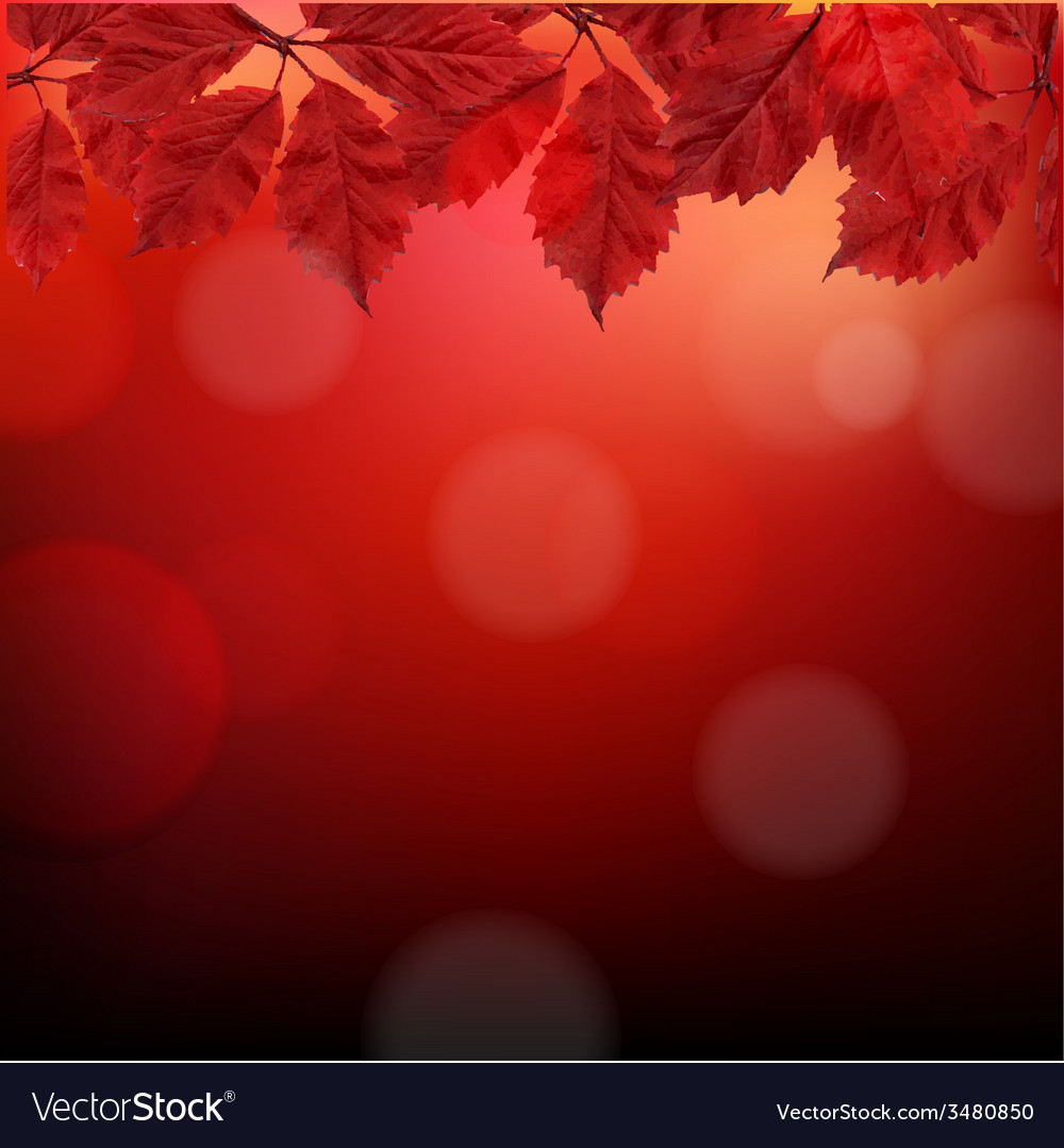 Red Autumn Background With Leaves