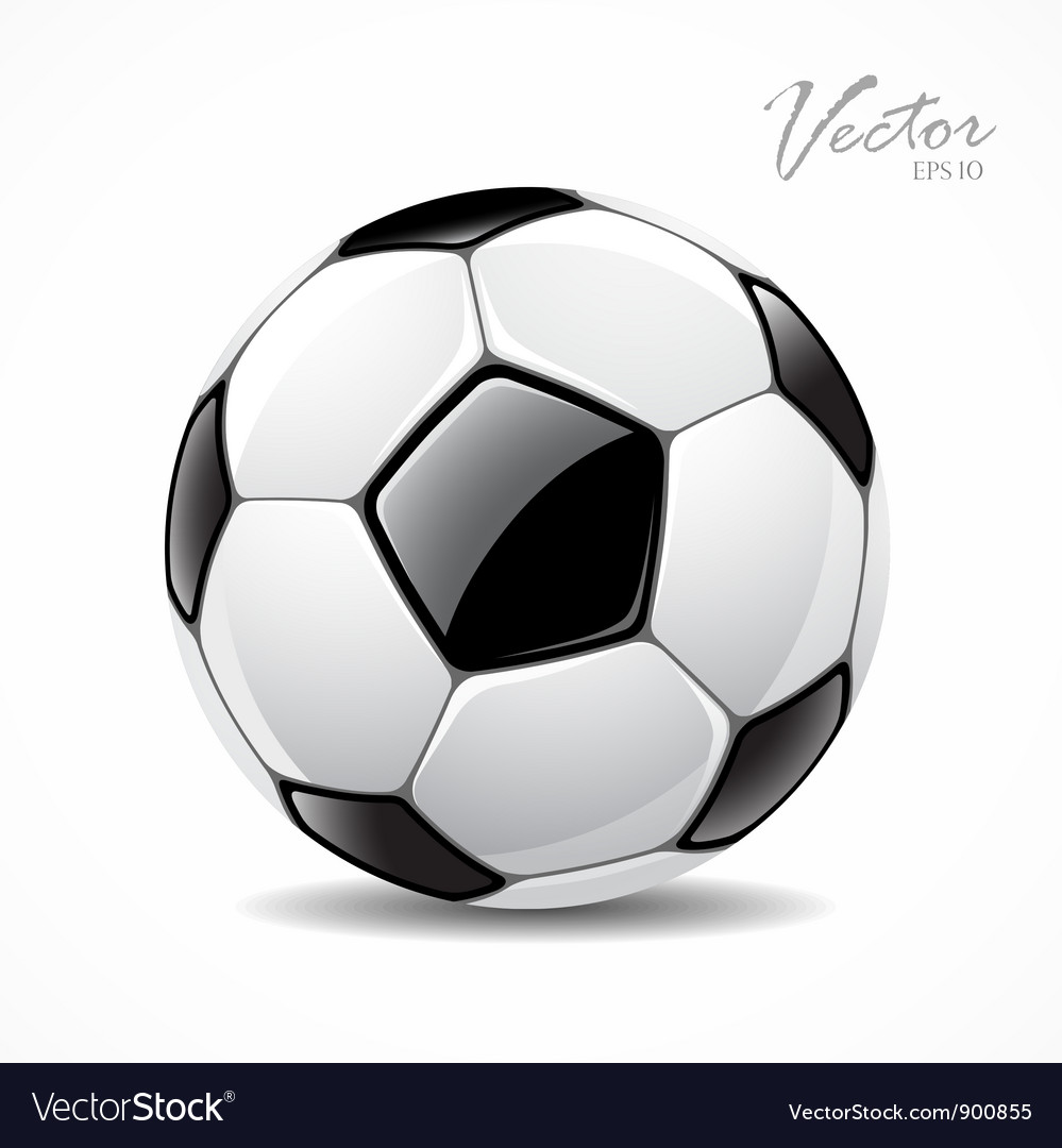 Soccer ball sport football game vector image