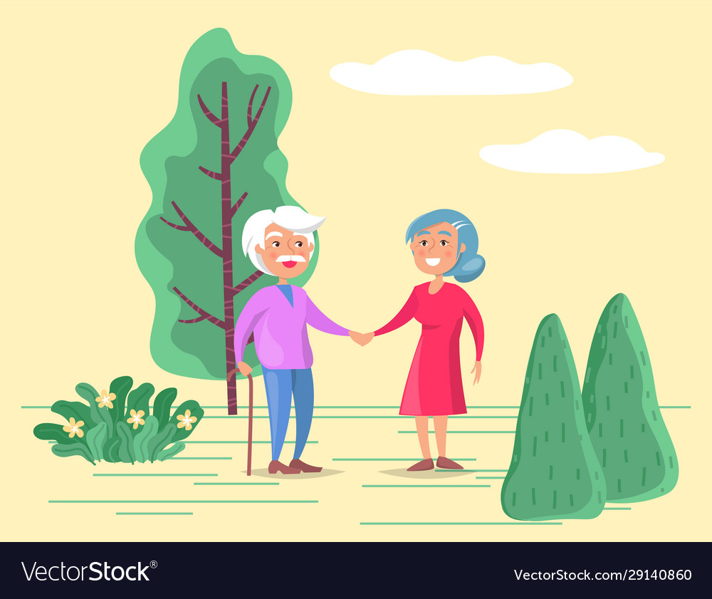 grandparents stroll in park old couple on walk vector image vectorstock