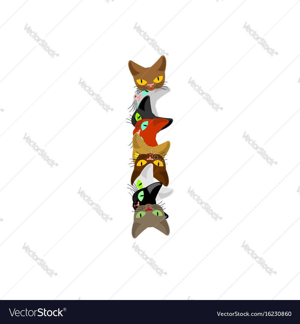 Letter i cat font pet alphabet symbol home animal vector image