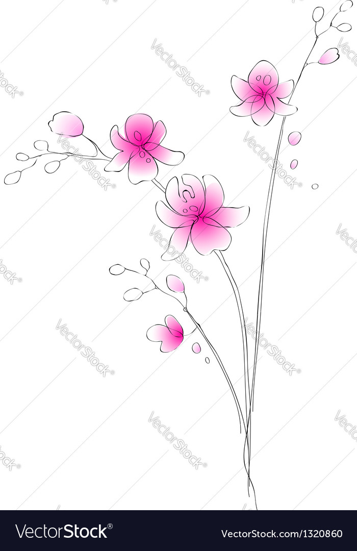 Watercolor orchid sketch