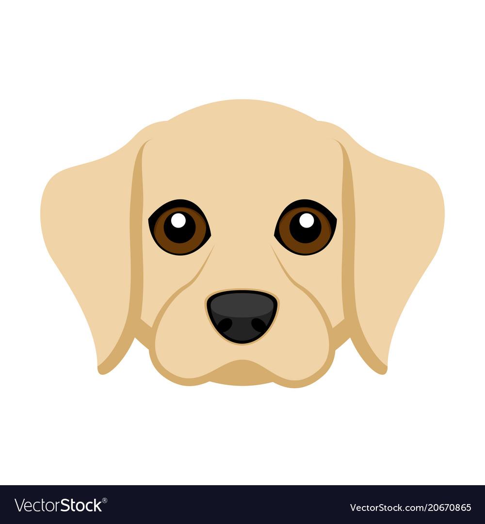Cute labrador retriever dog avatar